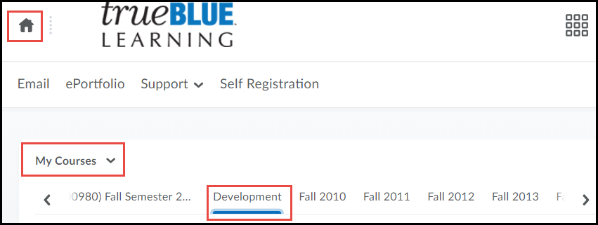 Development Choice in My Courses of D2L