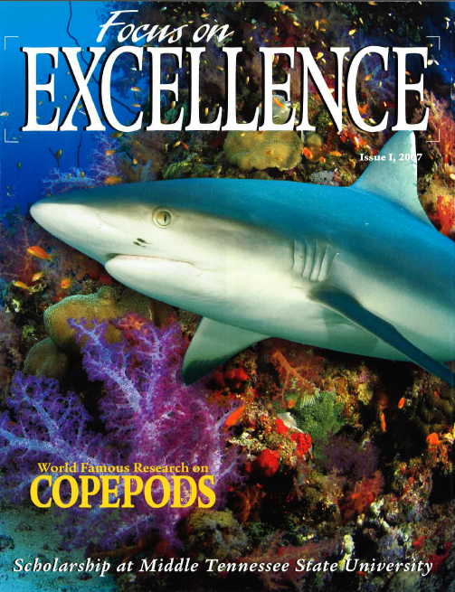 Excellence (Fall 2007)